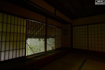IMG_7695.jpg